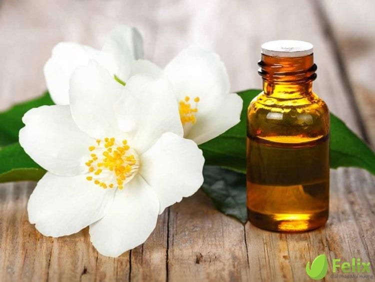 tinh dau hoa nhai jasmine