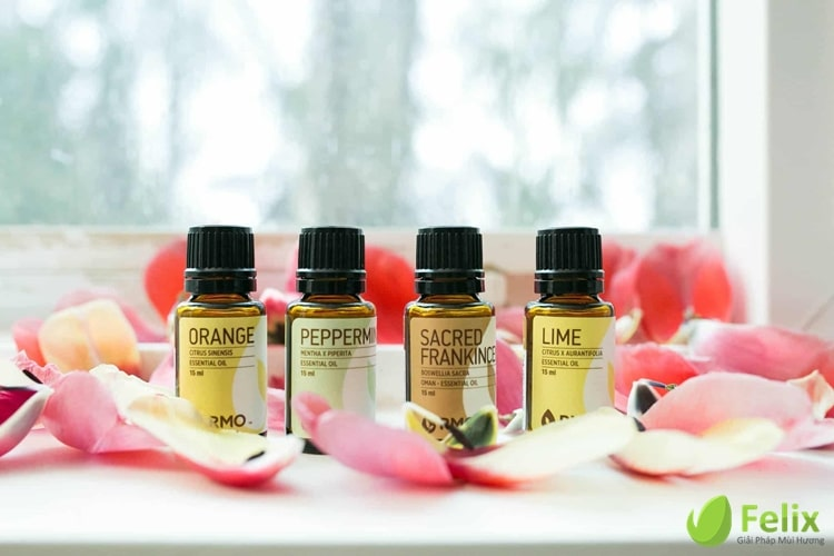 Top essential oil noi tieng the gioi